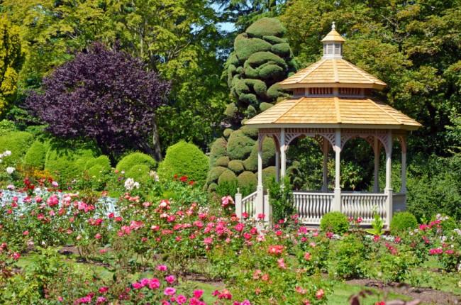 Беседка в классическом стиле на фоне газона из кустовых роз
