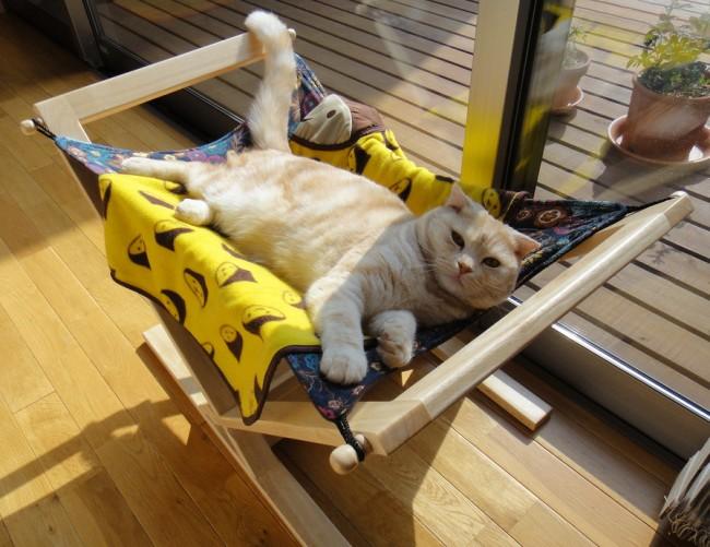 Гамак для любимых домашних питомцев. Совсем простой делают для морских свинок, а для кота можно изготовить и такой роскошный каркасный, как на фото
