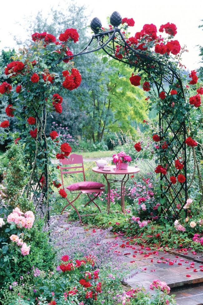 Кованая арка с красными розами