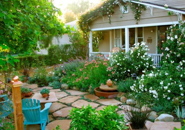 Плетистая роза как украшение загородного участка