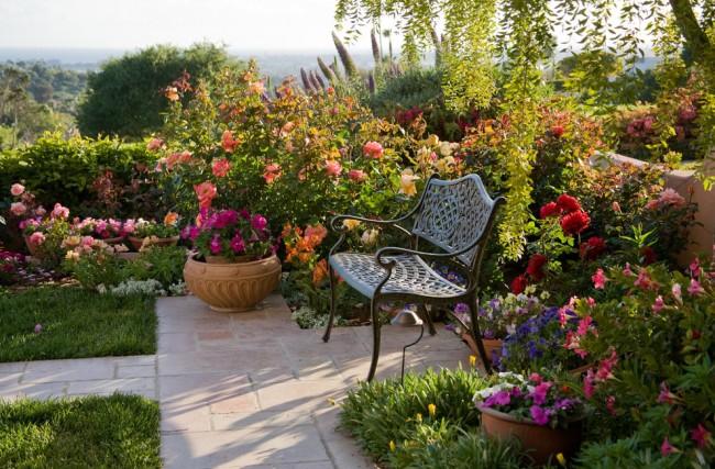 Благодаря своей красоте и универсальности роза впишется практически в любой ландшафтный дизайн