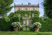 Фото 23 Роскошные кустовые розы: 50 изысканных садов с королевским ландшафтом (фото)