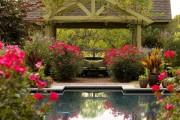 Фото 4 Роскошные кустовые розы: 50 изысканных садов с королевским ландшафтом (фото)