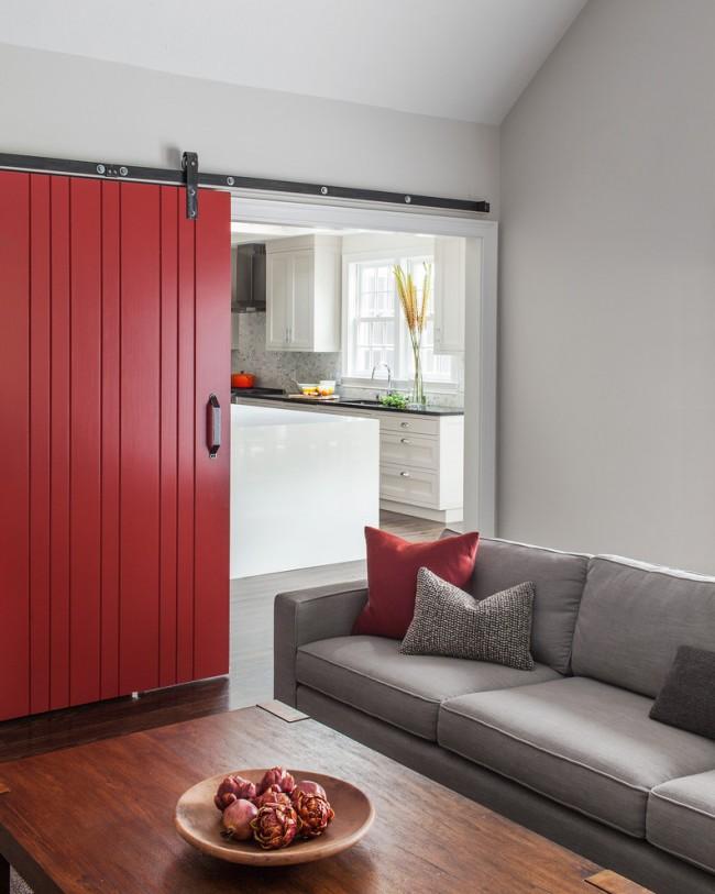 Одностворчатая раздвижная дверь в ярких оттенках