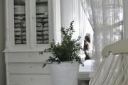 Фото 11 Тюль для зала и спальни: традиционное убранство окон и современные идеи дизайна, 50+ впечатляющих фото