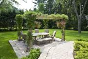 Фото 13 Вьющиеся растения для сада: 65 идей, как сделать дизайн своего участка неповторимым (фото)