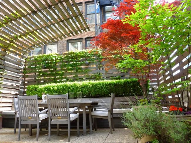 С помощью вьющихся растений можно создать живописный, всегда празднично выглядящий, уголок для отдыха
