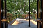 Фото 23 Вьющиеся растения для сада: 65 идей, как сделать дизайн своего участка неповторимым (фото)
