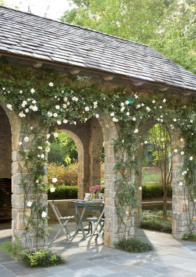Розы никого не оставляют равнодушным, очаровывая дивными оттенками, ароматом и формой лепестков