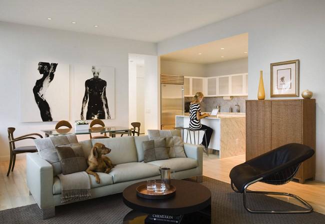 Дизайн гостиных, совмещенных с кухней. Такая планировка пространства - находка для молодых энергичных жителей мегаполисов. Работать за ноутбуком здесь можно где угодно