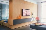 Фото 5 40+ Идей интерьера однокомнатной квартиры: как добиться комфортного минимализма