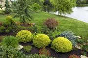 Фото 4 Ландшафтный дизайн дачного участка: 60 воплощений зеленого рая своими руками (фото)