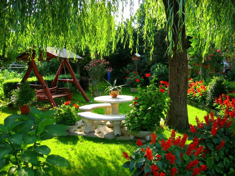 Мой сад дача ландшафтный дизайн