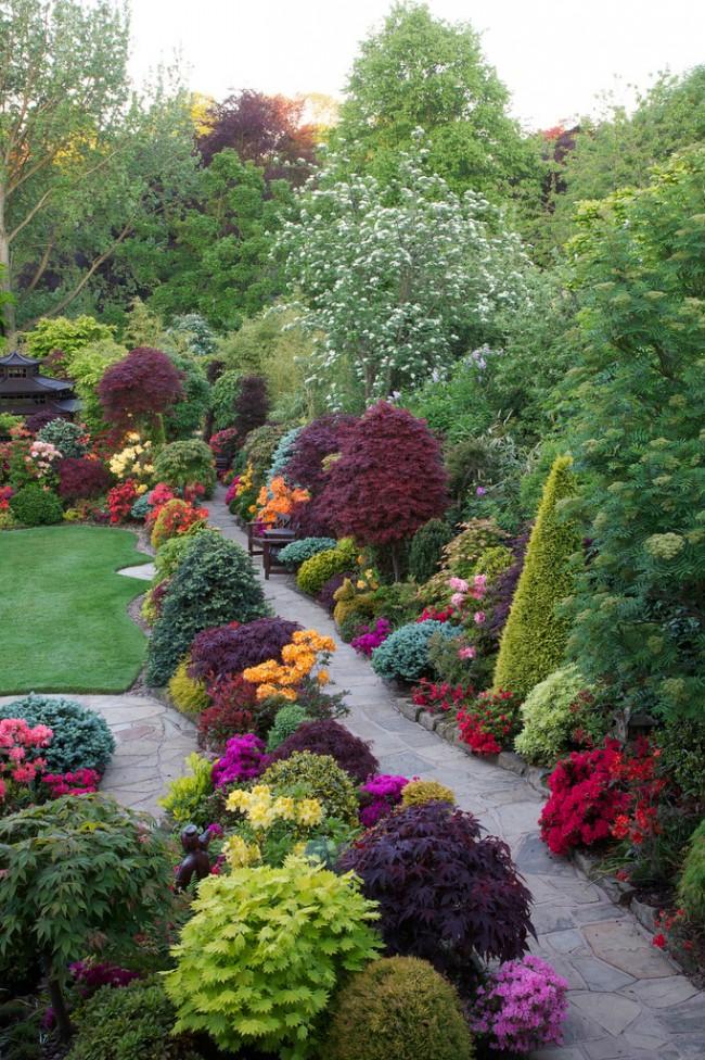 Ландшафтный дизайн с применением пестролистных растений
