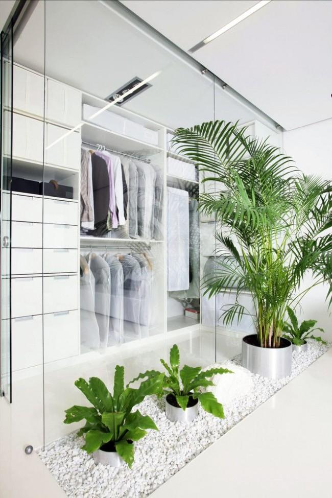 Стильная небольшая гардеробная за стеклом