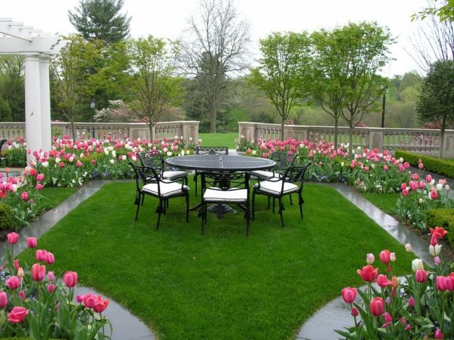 Вокруг места для отдыха вдоль дорожки посажены нежные тюльпаны