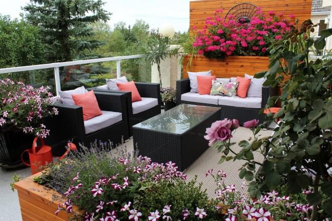 Яркие и красивые цветы на балконе могут радовать вас круглогодично