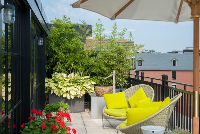 Зеленый оазис на лоджии городской квартиры