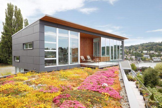 Одноэтажный дом со стеклянным фасадом из окон