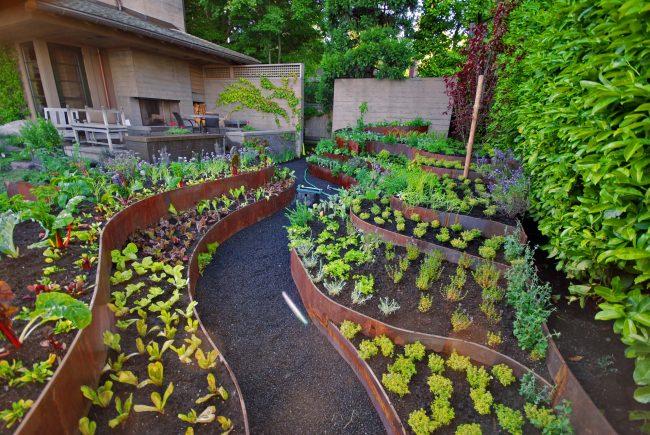 Интересное оформление огорода на дачном участке 6 соток
