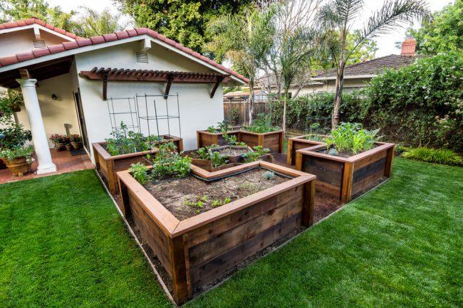 Компактный огород в виде клумб