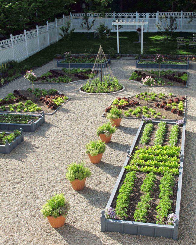Гармоничное сочетание овощных растений и цветочных клумб в ландшафтном дизайне дачного участка