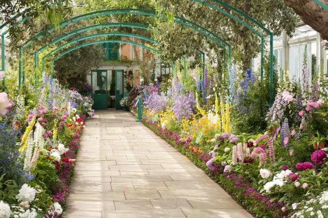 Разнообразие однолетних и многолетних цветов, украшающих узкий двор