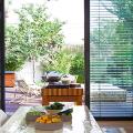 Жалюзи на кухню: советы по выбору и 35+ эстетически верных решений для дома фото