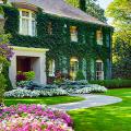 Создаем дизайн садового участка: рекомендации и 90 избранных идей своими руками фото