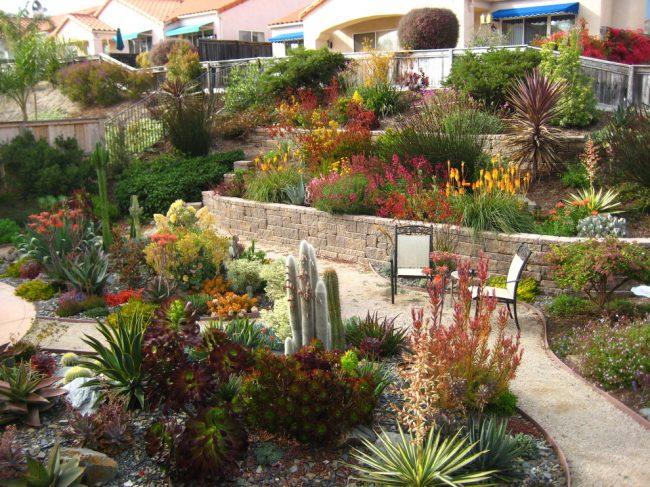 Каждый садовый участок или просто задний двор частного дома заслуживает внимания хозяев