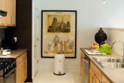 Фото 43 Картины для кухни: как определиться с выбором и 80 эстетически верных вариантов