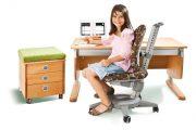 Фото 38 Ортопедические кресла для компьютера: функциональные особенности и советы по выбору