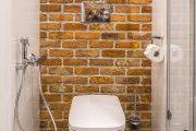 Фото 4 Дизайн туалетов маленьких размеров: 80 компактных и функциональных вариантов интерьера