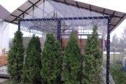 Фото 43 Прозрачные шторы для беседок и веранд (100+ фото): комфорт на даче круглый год и обзор наиболее изящных идей для декора