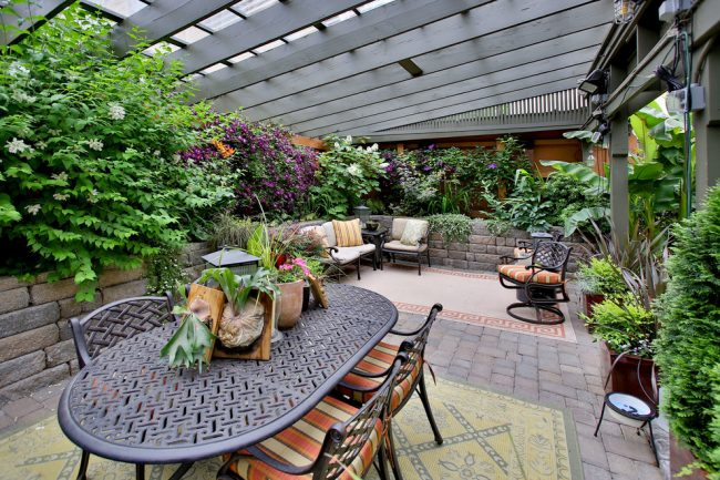 Декоративные растения придадут уюта интерьеру вашей веранды