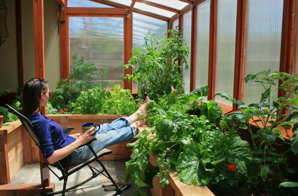 Теплицы из поликарбоната (47 фото): рациональное садово-дачн.