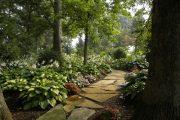 Фото 10 Хоста в ландшафтном дизайне: особенности ухода и 80 гармоничных композиций для сада