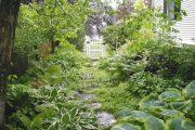 Фото 16 Хоста в ландшафтном дизайне: особенности ухода и 80 гармоничных композиций для сада