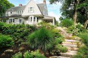Фото 20 Хоста в ландшафтном дизайне: особенности ухода и 80 гармоничных композиций для сада