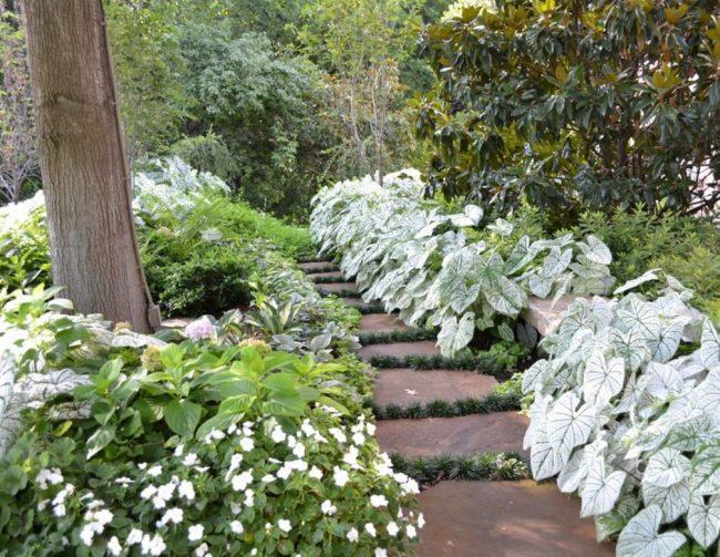 Восточные мотивы в декоре сада с хостой