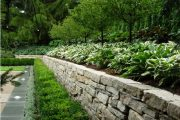 Фото 30 Хоста в ландшафтном дизайне: особенности ухода и 80 гармоничных композиций для сада