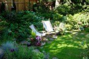 Фото 33 Хоста в ландшафтном дизайне: особенности ухода и 80 гармоничных композиций для сада