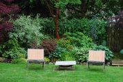 Фото 35 Хоста в ландшафтном дизайне: особенности ухода и 80 гармоничных композиций для сада