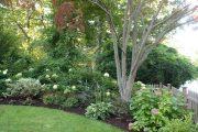 Фото 36 Хоста в ландшафтном дизайне: особенности ухода и 80 гармоничных композиций для сада