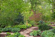 Фото 41 Хоста в ландшафтном дизайне: особенности ухода и 80 гармоничных композиций для сада