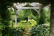 Фото 44 Хоста в ландшафтном дизайне: особенности ухода и 80 гармоничных композиций для сада