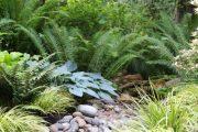 Фото 45 Хоста в ландшафтном дизайне: особенности ухода и 80 гармоничных композиций для сада