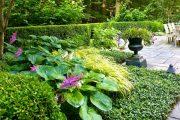 Фото 46 Хоста в ландшафтном дизайне: особенности ухода и 80 гармоничных композиций для сада