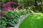 Фото 48 Хоста в ландшафтном дизайне: особенности ухода и 80 гармоничных композиций для сада