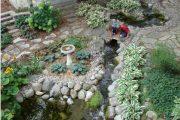 Фото 49 Хоста в ландшафтном дизайне: особенности ухода и 80 гармоничных композиций для сада